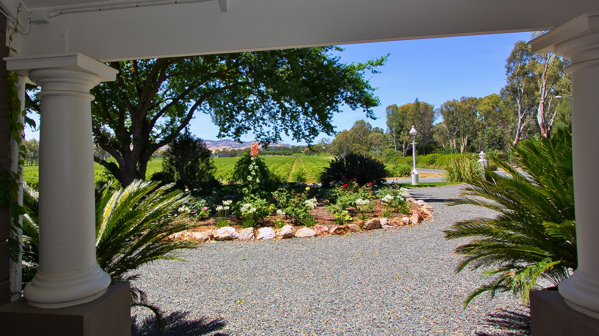 Vineyard Views Barossa Valley Lyndoch