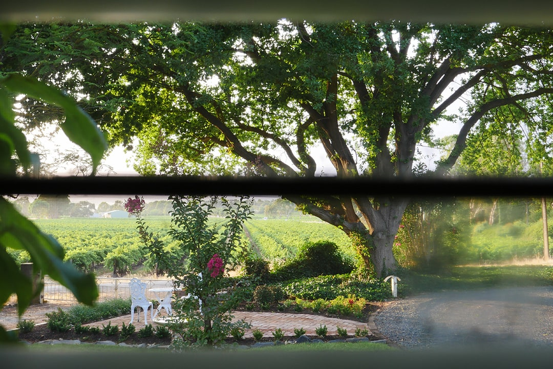 Vineyard Views - Wilsford House Barossa Valley